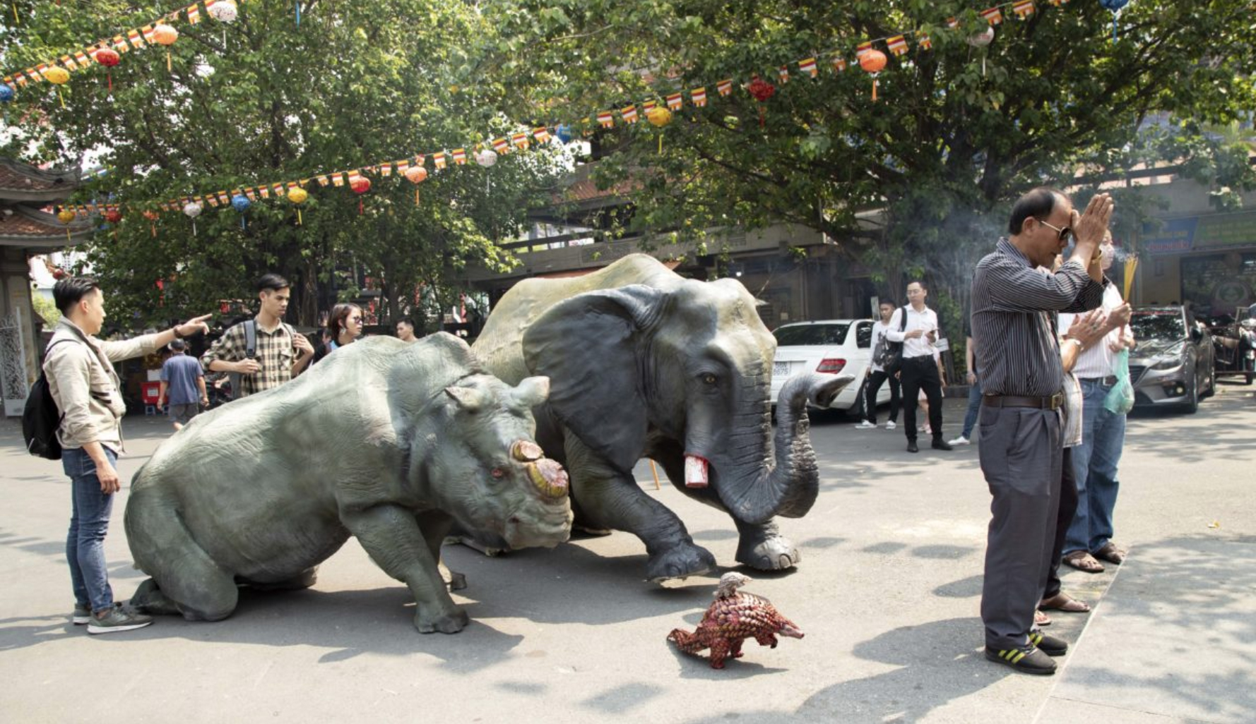 NEW CAMPAIGN URGES VIETNAMESE TO STOP BUYING WILDLIFE PRODUCTS ON EVE OF LUNAR NEW YEAR